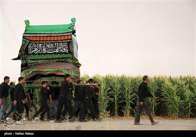 آیین سنتی نخل و علم گردانی در روستای مرادآباد -اراک