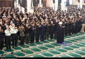 ظهر عاشورا در بوشهر به روایت تصویر
