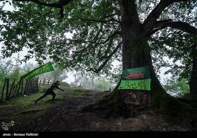 تاسوعا و عاشورا حسینی در روستای سنی مذهب شاه میلرزان