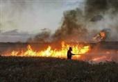 """اندلاع حرائق عدة فی مستوطنات """"غلاف غزة"""" بفعل بالونات حارقة"""