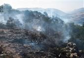 150 نقطه بحرانی آتشسوزی در لرستان شناسایی شد
