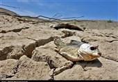 سیستان و بلوچستان هنوز با خشکسالی هواشناسی، کشاورزی و هیدرولوژی درگیر است