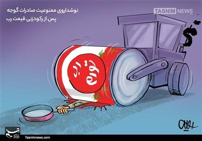 کاریکاتور/ نوشدارویصادراتگوجه پس از رکودزنیقیمترب