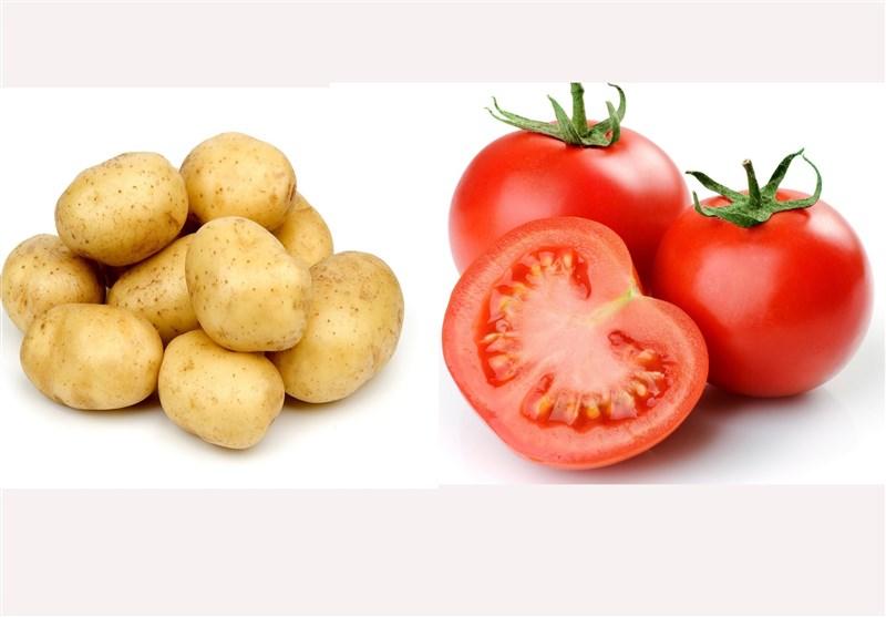 قیمت گوجه فرنگی به 9 هزار تومان رسید+نرخ انواع میوه