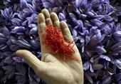 کاهش 60 درصدی فروش زعفران در بازار داخلی؛ قیمت تمامشده زعفران برای خارجیها بسیار ارزان