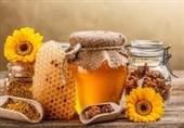 بیش از 1077 تن عسل امسال در استان زنجان تولید میشود
