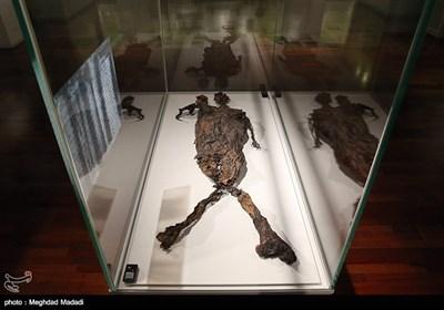 گشایش موزه آثار باستانی هلند