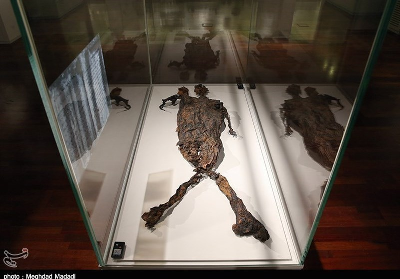 Naturally Mummified Exloermond Man on Display in Iran National Museum (+Photos)