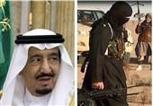 گزارش ویژه تسنیم|آغاز تهدیدات گسترده در ولایت مرزی ایران و افغانستان؛ طرح نفوذ کشورهای عربی و داعش علیه شیعیان چیست؟ + نمودار و فیلم