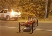 Chilling Moment Dead Body Tied to Bed on Saudi Road Caught on Camera (+Video)