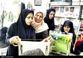 بانوی کارآفرین خوزستانی: خیرین به کارآفرینان در امر اشتغالزایی کمک کنند