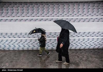 بارش باران در ساری