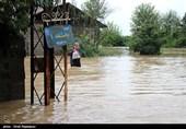 غرق شدن خودروهای شخصی در بارندگی شدید مازندران +عکس