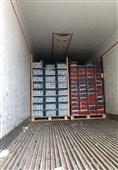 بوشهر| بیش از 13 تن گوجه فرنگی قاچاق در گمرک دیر کشف شد