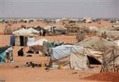 """روسیه: مسئولیت وضعیت پناهجویان اردوگاه """"الرکبان"""" برعهده آمریکاست"""