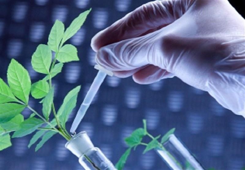 یافتههای تحقیقاتی کشاورزی در اردبیل به مرحله تجاریسازی میرسد
