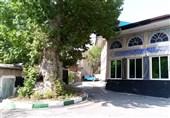 همسایگی مذهب و طبیعت در سرزمینی با نماد سلامت سیب و عسل/حسینیههایی مشهور به چنار + تصاویر