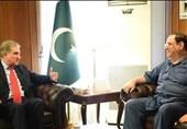 وزیرخارجه پاکستان در دیدار با سفیر عراق: مشکل صدور ویزا برای زوار پاکستانی به سرعت حل شود