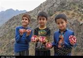کردستان  نخستین جشنواره انار اورامان به روایت تصویر