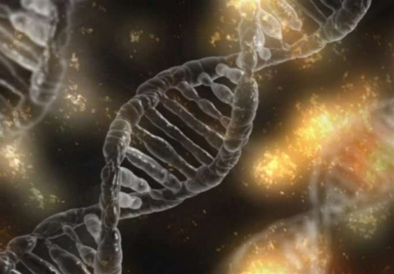 New Genetic Barcoding Technology Helps Scientists Identify Critical Cancer Immunity Genes