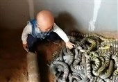 Daredevil Toddler Handles Nest of Snakes before Even Could Talk (+Video)