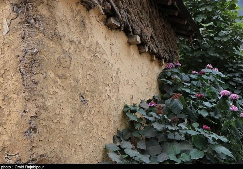 «سیاهگل چال» روستایی در دل طبیعت بکر گیلان به روایت تصویر