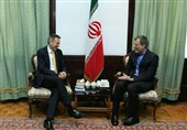 Foreign Officials Hold Meetings at Iran's Foreign Ministry