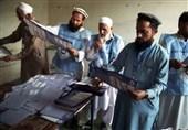 کمیسیون انتخابات افغانستان: ناظران انتخاباتی روند بازشماری آرا را مختل میکنند