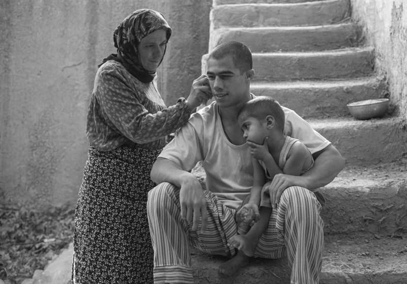 """بسته نوروزی رادیو و تلویزیون تسنیم/ دهم فروردین با فیلم """"تختی"""" و """"نبات"""" شهاب حسینی"""