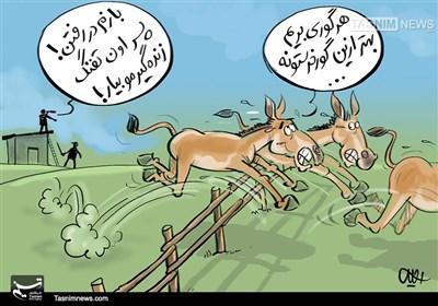 کاریکاتور/ کمدی تلخ طرح احیای گورخر