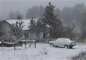 بارش نخستین برف سال در ترکیه + عکس