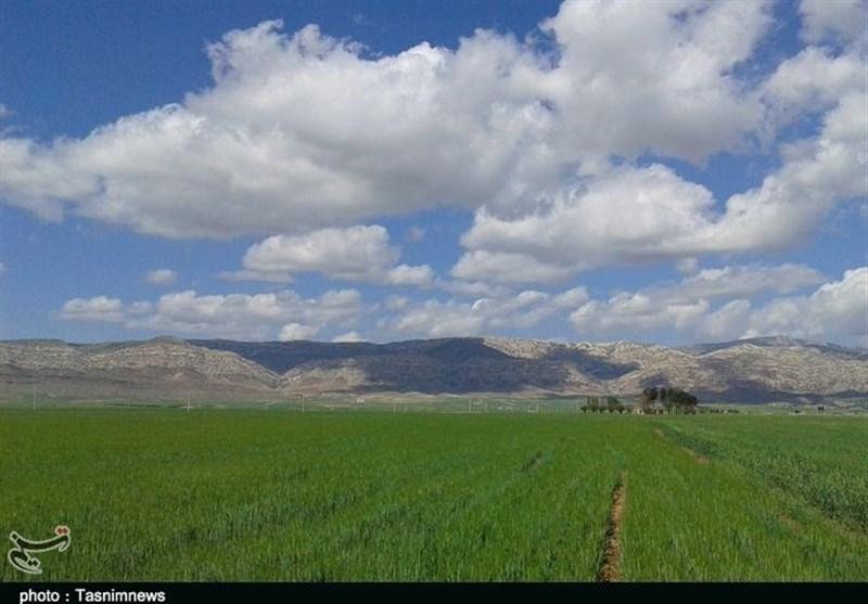 4 سال گذشت؛ خبری از امهال وامهای بخش کشاورزی کردستان نشد