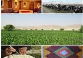 بوشهر|تسهیلات جدید کمبهره اشتغال و تولیدات روستایی نیمه دوم امسال پرداخت میشود