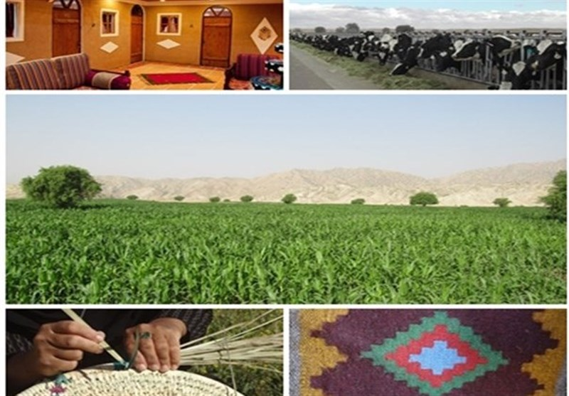 رشد 4 برابری آموزش اشتغال مددجویان کمیته امداد اصفهان