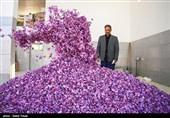 قرارداد آتی پوشال زعفران از فردا در بورس کالا راهاندازی میشود