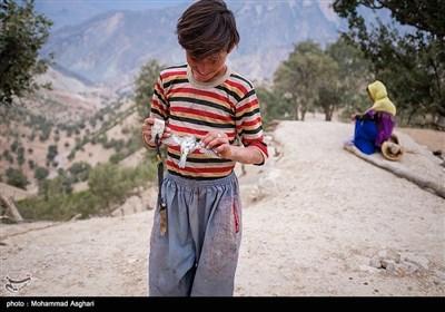 روستای پزعلیا-بخش ذلقی غربی - شهرستان الیگودرز-استان لرستان-مسلم حسنی تا کلاس سوم درس خونده ودیگر به کلاس نمیرود و چوپانی میکند.