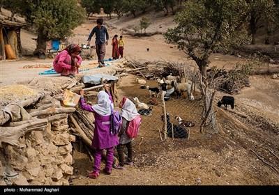 روستای پز علیا- بخش ذلقی غربی - شهرستان الیگودرز-استان لرستان-محترم 11 ساله، کلاس پنجمی با دوستانش زهرا و عاطفه حسنی در حال حرف زدن هستند.محترم دیگر به کلاس نمیرود.
