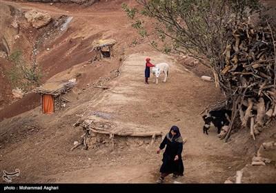 -روستای پز علیا- بخش ذلقی غربی - شهرستان الیگودرز-استان لرستان-در این مناطق بچه ها در اوقات فراغت خود با حیوانات بازی میکنند و سرگرمی دیگری ندارند.