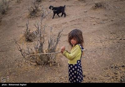 روستای دست گرد-بخش ذلقی شرقی- شهرستان الیگودرز-استان لرستان-زهره آج 5 ساله در حال چوپانی در زیر باران.