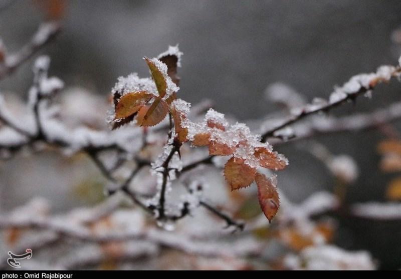 بارش برف پاییزی در اشکورات گیلان + عکس
