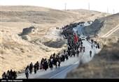 اختصاصی| آمار نهایی و تفکیکی زائران پیاده امام رضا(ع) اعلام شد
