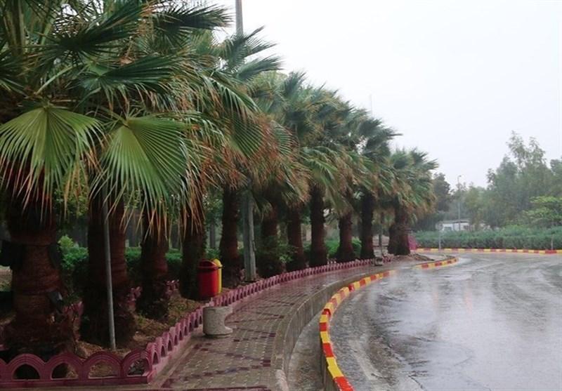میزان بارش باران در بوشهر به 86 میلیمتر رسید