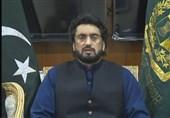 تاکید وزیر کشور پاکستان به مجازات قطعی راناثناءالله