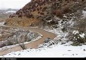 بارش برف گردنههای استان قزوین سفیدپوش کرد