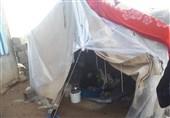 حکایت پیرزنی یاسوجی که در سرمای سوزان در چادر زندگی میکند