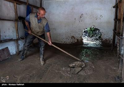 محمد پورخانعلی 50 ساله، در حال تمیز کردن گل و لایی که سیل با خود به داخل مغازه آورده است. رانش زمین و سقوط تکه سنگی بزرگ دیوار مغازه اش را سوراخ کرده، سیل تمام وسایل و مواد غذایی را با خود برده است. روستای خرجگیل تالش 6 مهر 97