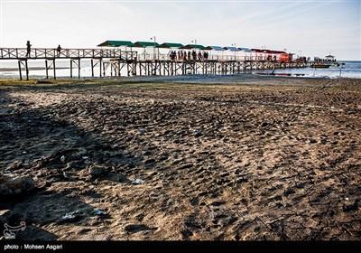 مرگ خلیج گرگان