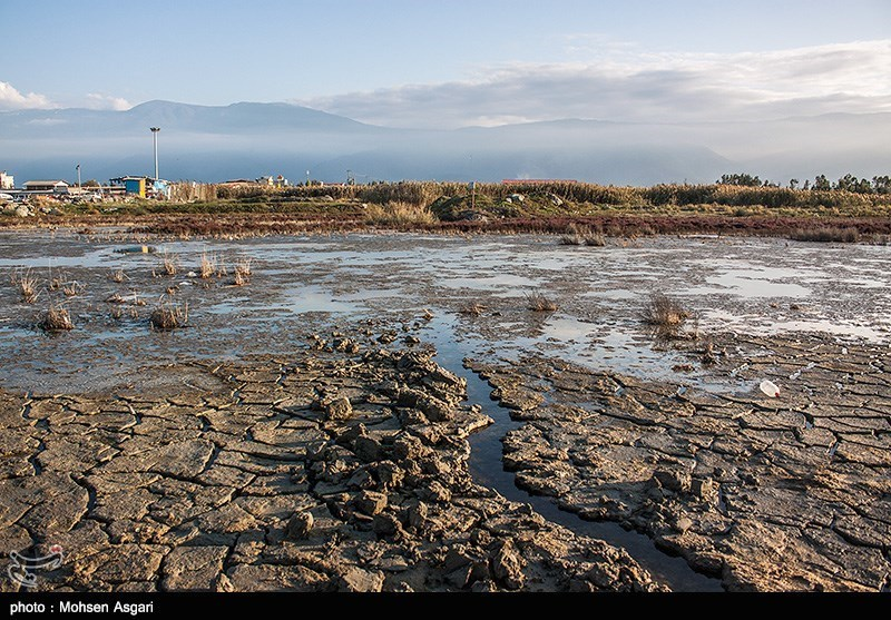 کابوس مرگ برای تنها خلیج ایرانی دریای خزر/ وعده دولت 6 ساله شد
