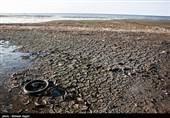 8 هزار هکتار از مساحت خلیج گرگان خشک شد