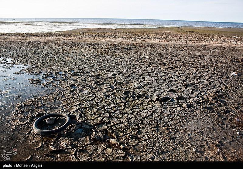 نجات خلیج گرگان در انتظار تصمیم محیط زیست / 8000 هکتار از مساحت خلیج خشک شد